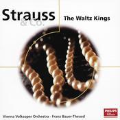 Strauss & Co.: The Waltz Kings Songs
