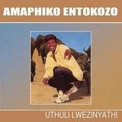 Uthuli Lwezinyathi Songs