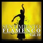 Sentimiento Flamenco Vol.10 Songs