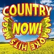 Mega Country Karaoke Hits Now! Songs