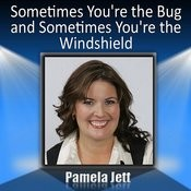 Sometimes You're The Bug And Sometimes You're The Windshield Song