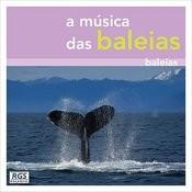 A Música Das Baleias Songs
