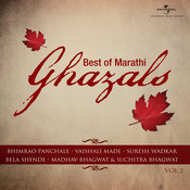 Best of Marathi Ghazals (Vol. 2) Songs