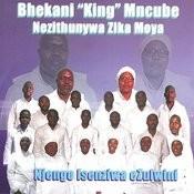 bhekani ezulwini mp3