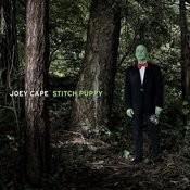 Stitch Puppy Songs