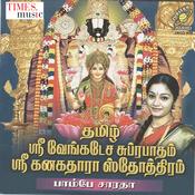 Sri Narayana Song