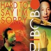 Hard To Say I'm Sorry (Instrumental Radio Version) Song