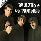 Raulzito E Os Panteras Songs