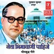 Neta Bheemavani Pahije Songs