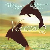 Voices 2 Songs
