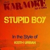 Stupid Boy (In The Style Of Keith Urban) [Karaoke Version] - Single Songs
