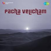 Pacha Velicham Songs