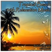Tropical Beach With Relaxation Music Songs