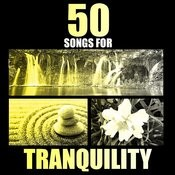 Eventide: 50 Songs For Tranquility Songs
