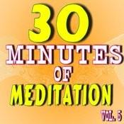 30 Minutes Of Meditation, Vol. 5 Songs
