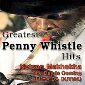 Greatest Penny Whistle Hits (The Day Is Coming, Li Ya Da Duvha) Songs