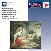String Quartet No.2 in A Minor, Op.13: III. Intermezzo.  Allegretto Con Moto - Allegro Di Molto - Tempo I Song