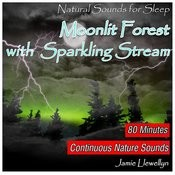 Natural Sounds For Sleep: Moonlit Forest With Sparkling Stream (Full Album Continuous Mix) Song