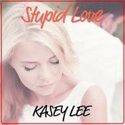 Stupid Love Songs