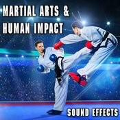 Martial Arts & Human Impact Sound Effects Songs