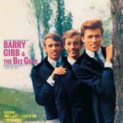 The Bee Gee's Sing And Play 14 Barry Gibb Songs Songs