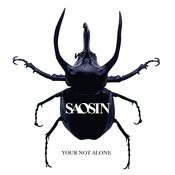 You're Not Alone (Radio Edit)(Single) Songs