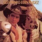 ALEJANDRO FERNANDEZ Songs
