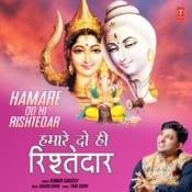 Hamare Do Hi Rishtedar Song