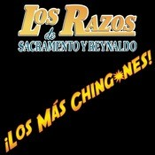 Los Ms Chingones Songs