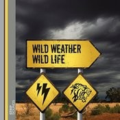 Wild Weather Wild Life  - The Aftermath Songs