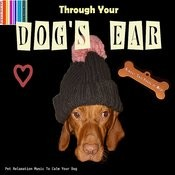 Through Your Dog's Ear Songs