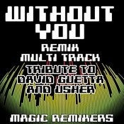 Without You (Re-Mix Multi Track Tribute To David Guetta & Usher) Songs