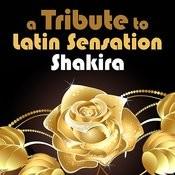 A Tribute To Latin Sensation Shakira Songs
