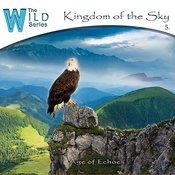 Kingdom Of The Sky Songs