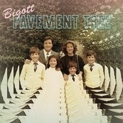 Pavement Tree Songs
