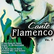 Cante Flamenco Vol. 1 Songs