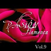 Pasión Flamenca Vol.9 Songs