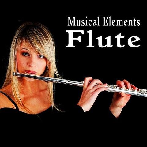 Freesound - Wood_Flutes