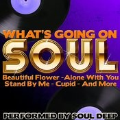 What's Going On: Soul Songs