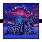 Mentales Cebras Songs