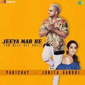 Jeeya Mar Ke Tum Mile Dil Khile Songs