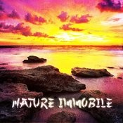 Zen & Relaxation: Nature Immobile Songs
