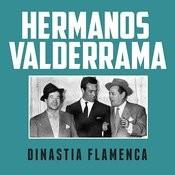 Dinastia Flamenca Songs