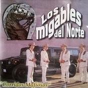 Corridos Mafiosos Songs