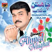 Chahatan Ja Gulab, Vol. 4 Songs