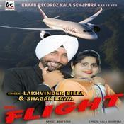 Flight Song