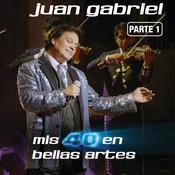 Mis 40 En Bellas Artes (En Vivo Desde Bellas Artes, México/ 2013/ Parte 1) Songs