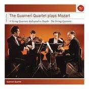 Guarneri Quartet Plays Mozart Quartets And Quintets Songs