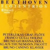 Ludwig Van Beethoven: Trio G-Dur WoO 37 / Serenade D-Dur Op. 25 Songs