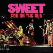 Fox On The Run (Single) Songs